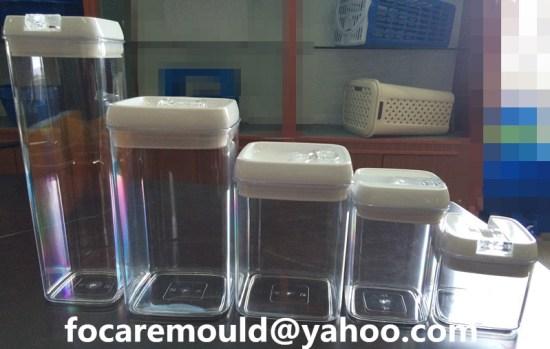 China fresh box mold