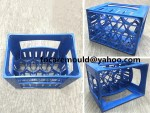 China bottle crate mold for coke
