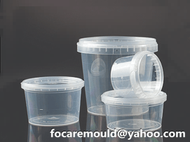 disposable lunch box mold China maker