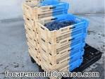 bicolor crate box mold