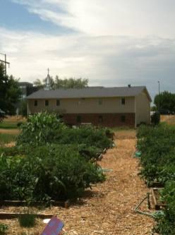 Garden with Building