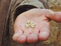 ¿Cómo Ponerle el Pecho a la Minería Ilegal de Oro en Colombia?