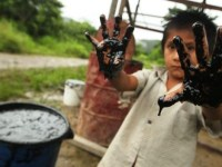 Derrames de Petróleo y Salud Mental de las Poblaciones Afectadas