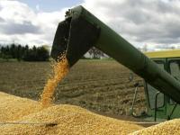 Productividad de la mano de obra agrícola y generación de ingresos en el campo