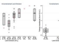 Herencias de tierras: preferencias, incertidumbre y eficiencia