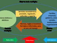 El Covid-19, la economía de recursos naturales y los sistemas socio-ecológicos