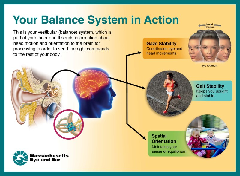 Your balance system in action.