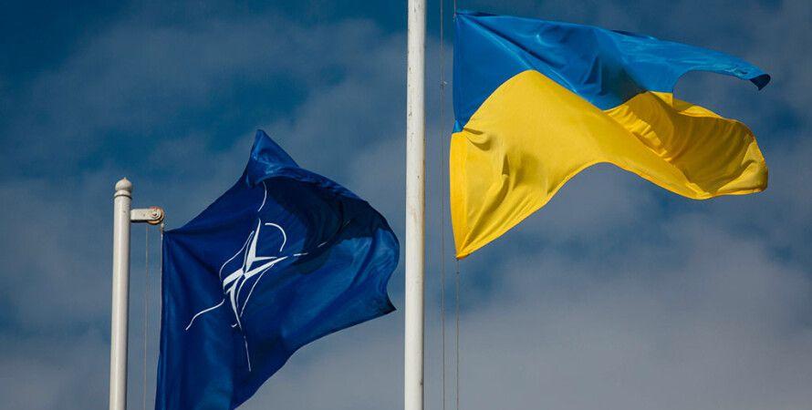 Польша хочет изменить формат встреч Украина-НАТО - ФОКУС