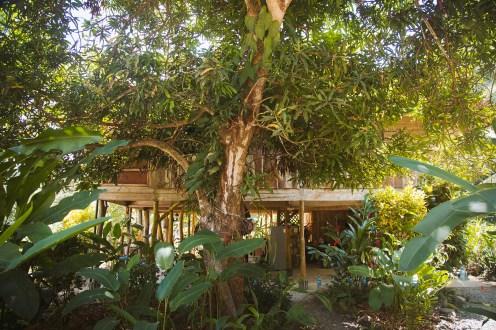 Les cabanes ont été construites en harmonie avec la nature environnante