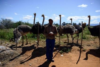 Bericht uit Zuid-Afrika #7