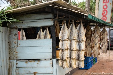 Dried fish stall, Sri Lanka