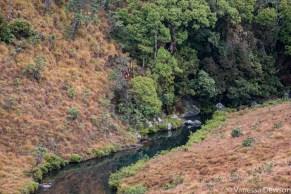 Stream in Horton Plains, Sri Lanka
