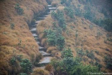 Path in Horton Plains, Sri Lanka