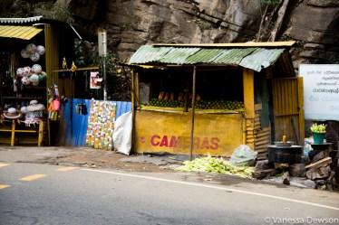 Those 'cameras' look a lot like mangoes!