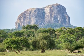 Elephant Rock, Yala National Park