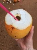 Drinking fresh coconut water.