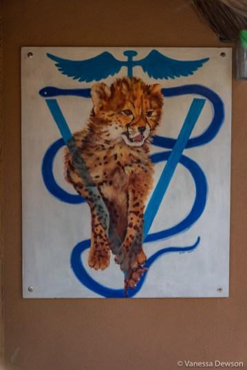 The vet clinic