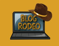 Blog Rodeo
