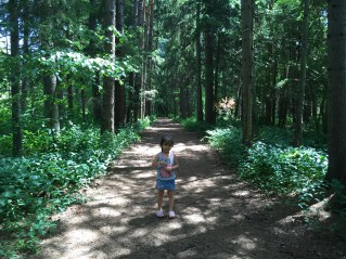 Chase posing in front of the beautiful forest
