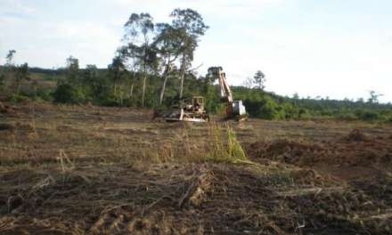 Cambodian Villagers: Stop Destroying Forests, Lands, and Fisheries in the Name of Development