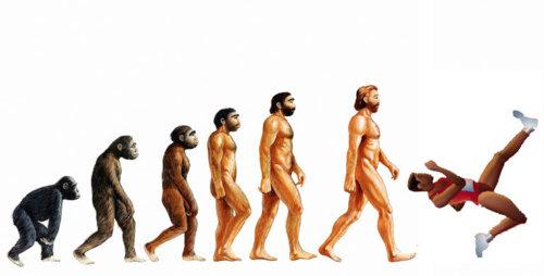 Evolution of QWOP