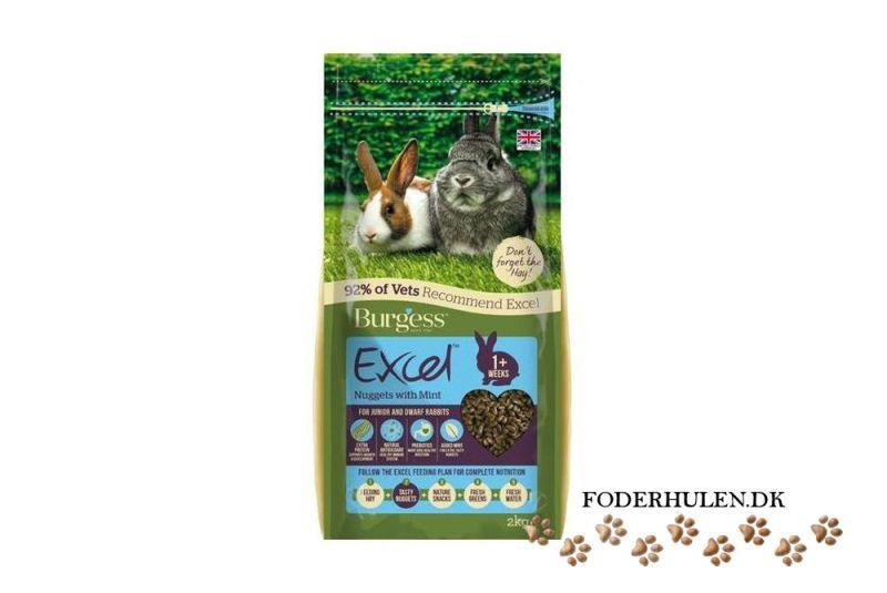 Burgess Excel junior kanin med mint