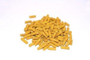 Græskar pellets