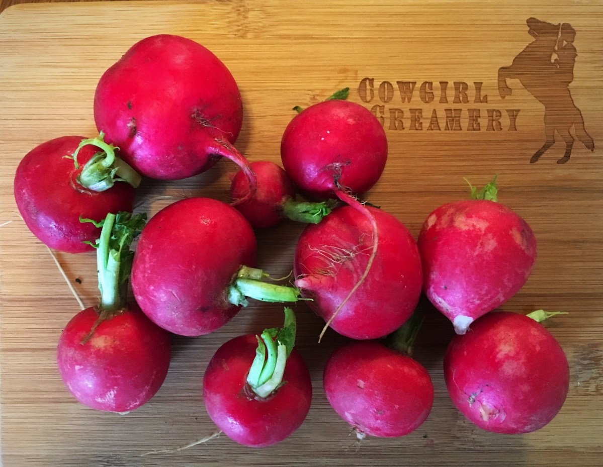 Radishes 3 Ways – Part 1