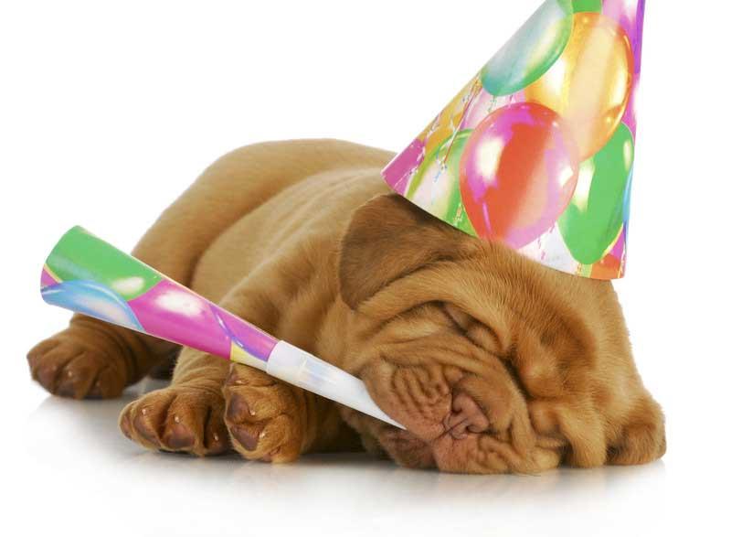 tillykke med fødselsdagen5 - Fødselsdag