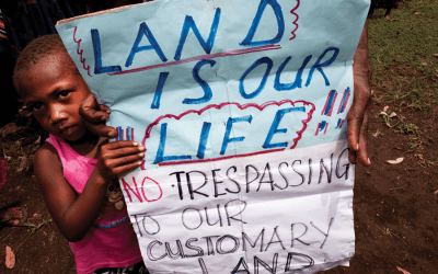 The Laws of Land Grabs in Papua New Guinea