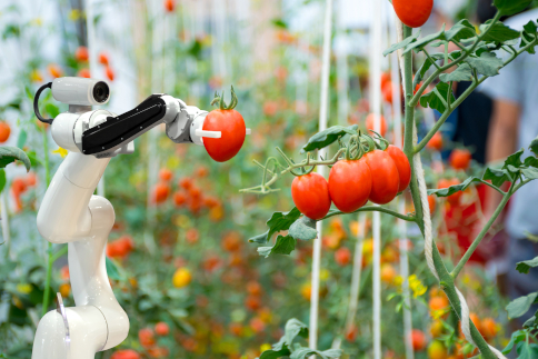 What will be the future of food?