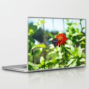 butterfly-laptop-skin