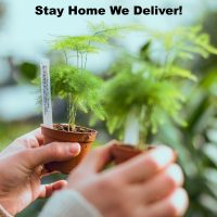 San Francisco Home Delivery