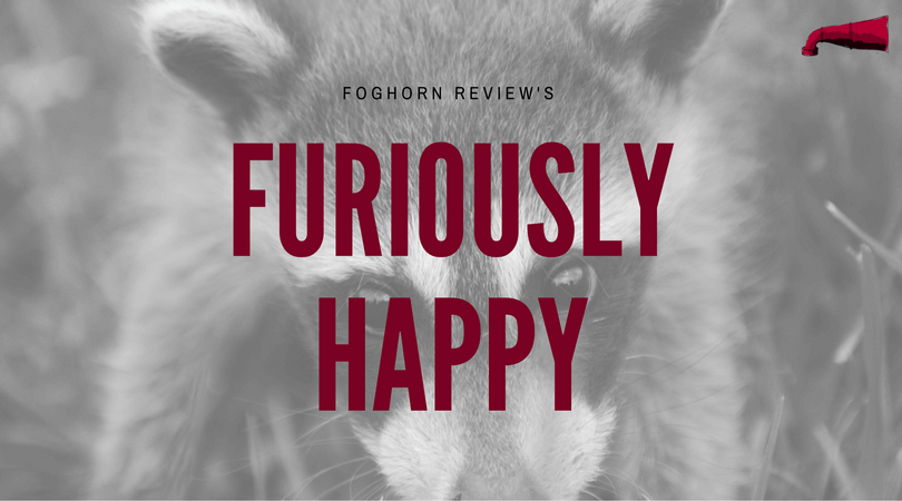 Furiously Happy Book Review
