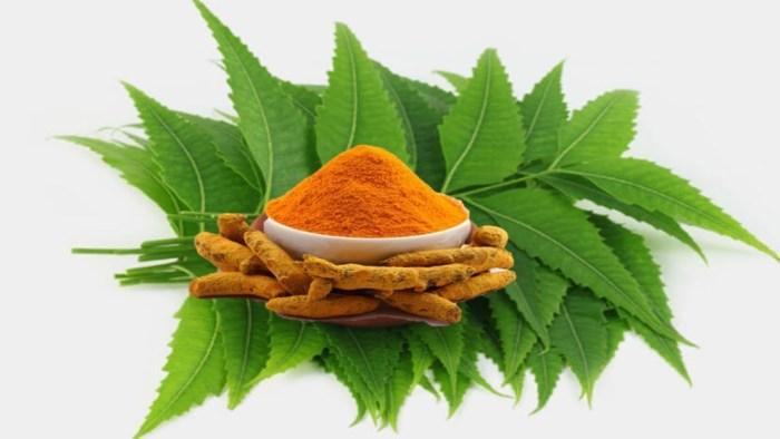 neem & turmeric