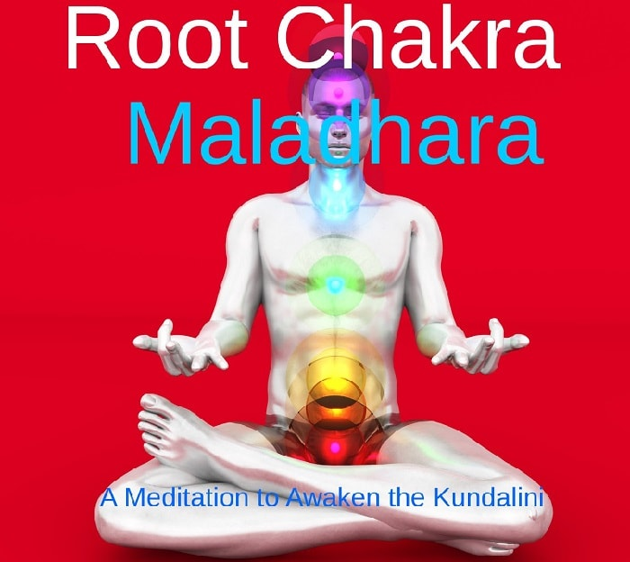 awaken root chakra