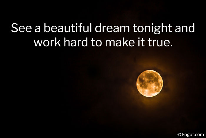 see a beautiful dream tonight