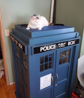 TARDIS-House-For-Cats-3