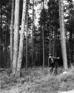 OGIS's new Director surveys the FOIA landscape (Obviously, this is not a photograph of Dr. Holzer). NARA Identifier 2130972