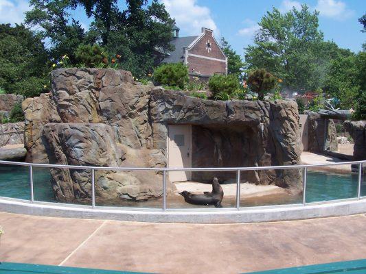 Buffalo-Zoo-07