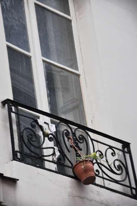 Par ma fenêtre, je peut voir une fenêtre avec des plantes. Cette fenêtre-ci n'est pas celle, mais une autre fenêtre très proche.