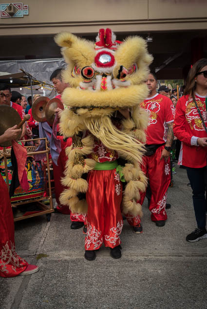 fokopoint-0028 Chinese New Years Celebration 2019