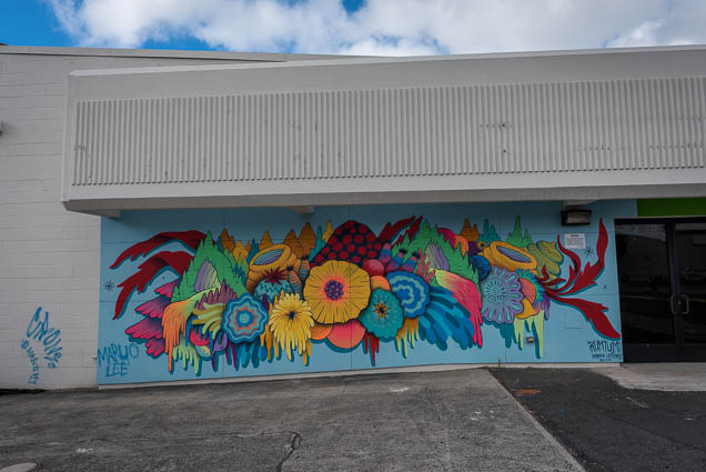 kakaako-street-art-honolulu-fokopoint-1047 Kaka'ako Street Art March 2019