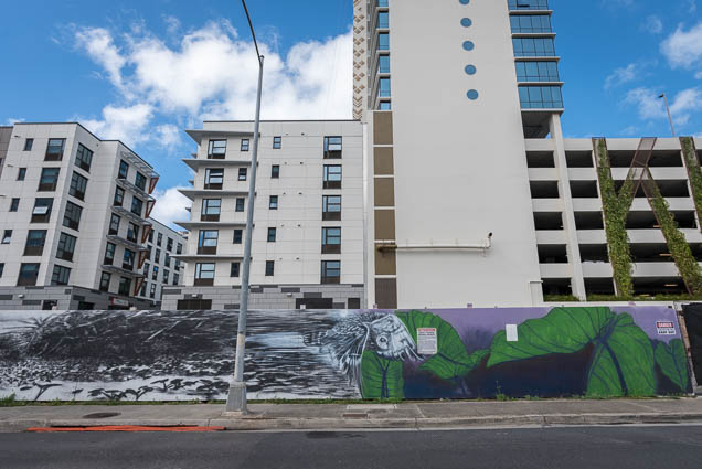 kakaako-street-art-honolulu-fokopoint-1169 Kaka'ako Street Art March 2019