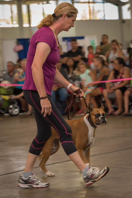 hawaii-pet-expo-2019-honolulu-blaisdell-fokopoint-3133 Hawaii Pet Expo 2019