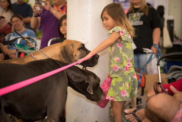 hawaii-pet-expo-2019-honolulu-blaisdell-fokopoint-3150 Hawaii Pet Expo 2019