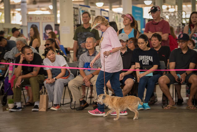 hawaii-pet-expo-2019-honolulu-blaisdell-fokopoint-3197 Hawaii Pet Expo 2019