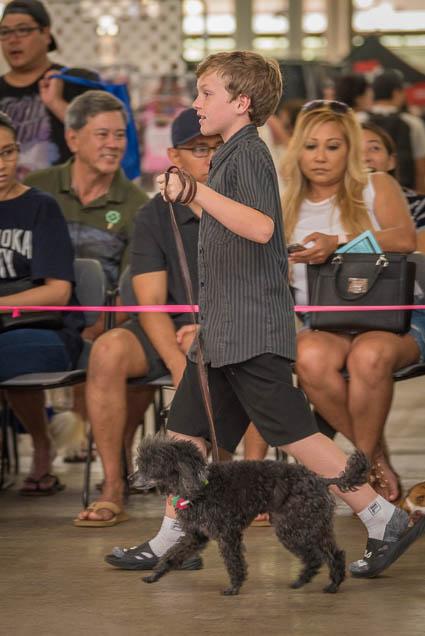 hawaii-pet-expo-2019-honolulu-blaisdell-fokopoint-3299 Hawaii Pet Expo 2019
