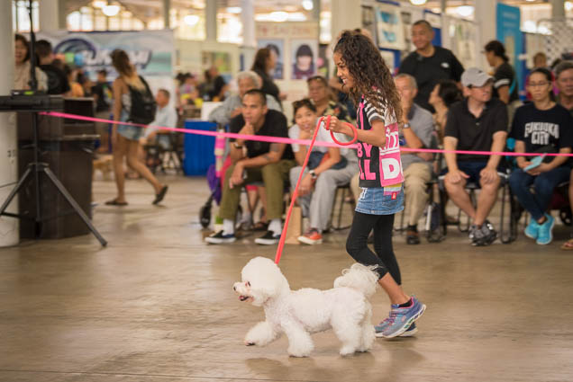 hawaii-pet-expo-2019-honolulu-blaisdell-fokopoint-3339 Hawaii Pet Expo 2019