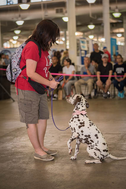 hawaii-pet-expo-2019-honolulu-blaisdell-fokopoint-3349 Hawaii Pet Expo 2019